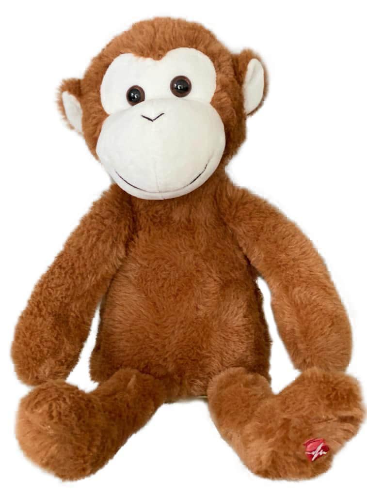 cute baby's monkey